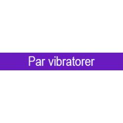 Parvibratorer